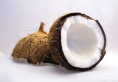 Coconut Oil Benefits by Dr. Oz